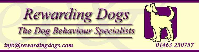Rewarding Dogs - The Dog Behaviour Specialists