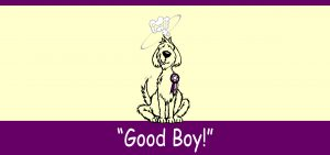 GOOD BOY TESTIMONIAL